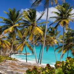 Karaiby Barbados kitesurfing